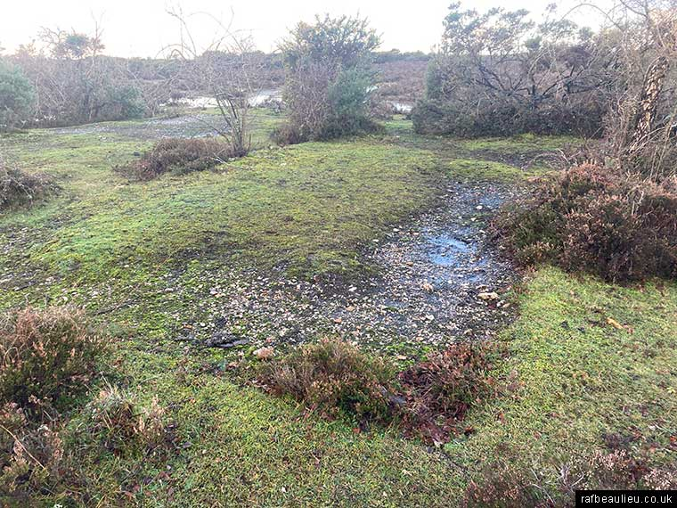 defence hut remains at Beaulieu heath