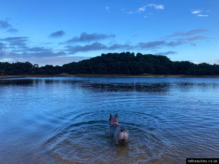 ra beaulieu heath pond nearly pilley