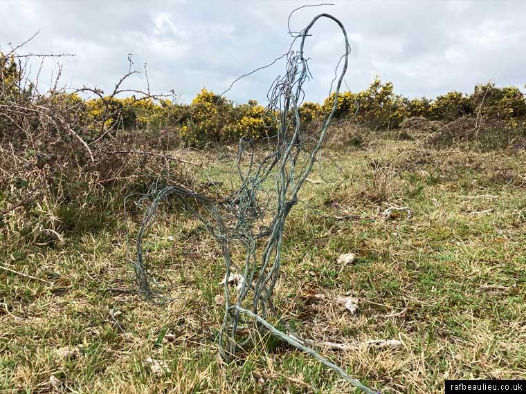 wire on Beaulieu Heath