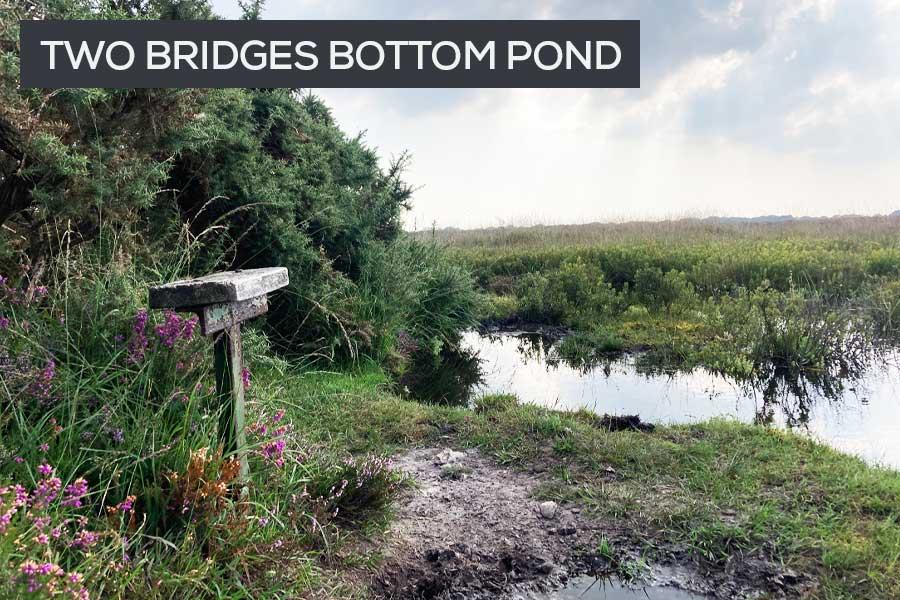 two bridges bottom pond